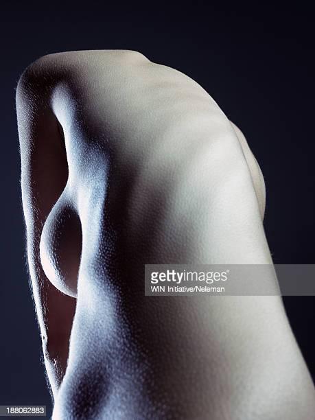 Naked torso of a beautiful woman