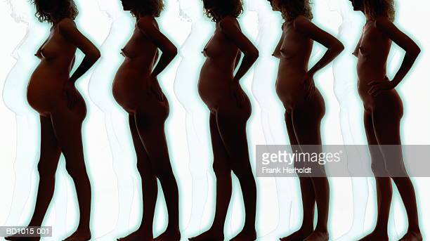 Naked woman showing stages of pregnancy (Digital Composite)