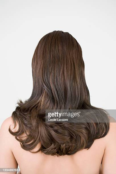 Naked woman with long brown hair, rear view