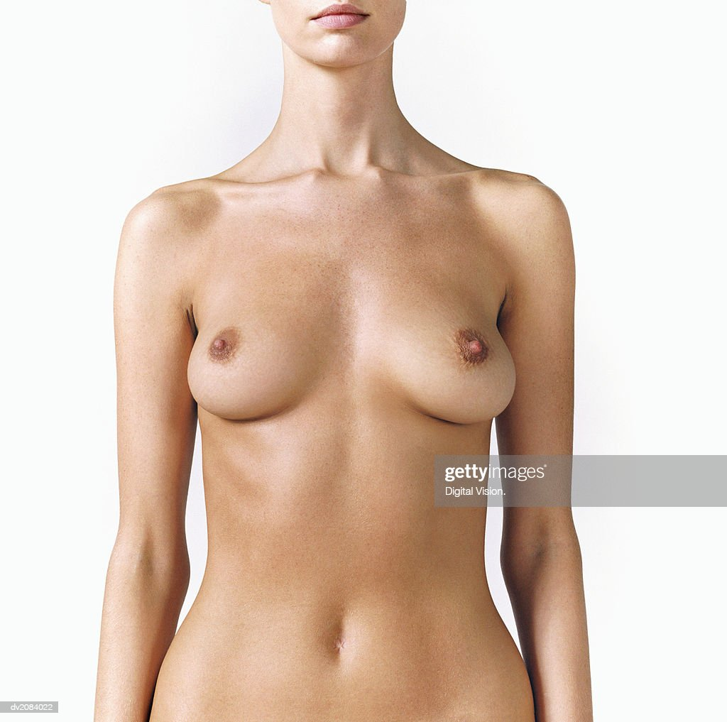 Naked Woman's Torso : Stock Photo