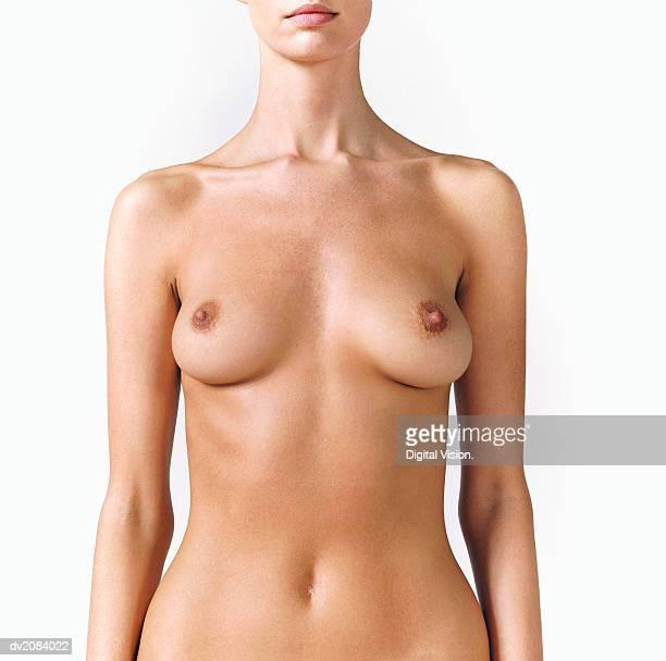naked woman's torso - nackte frau brüste stock-fotos und bilder