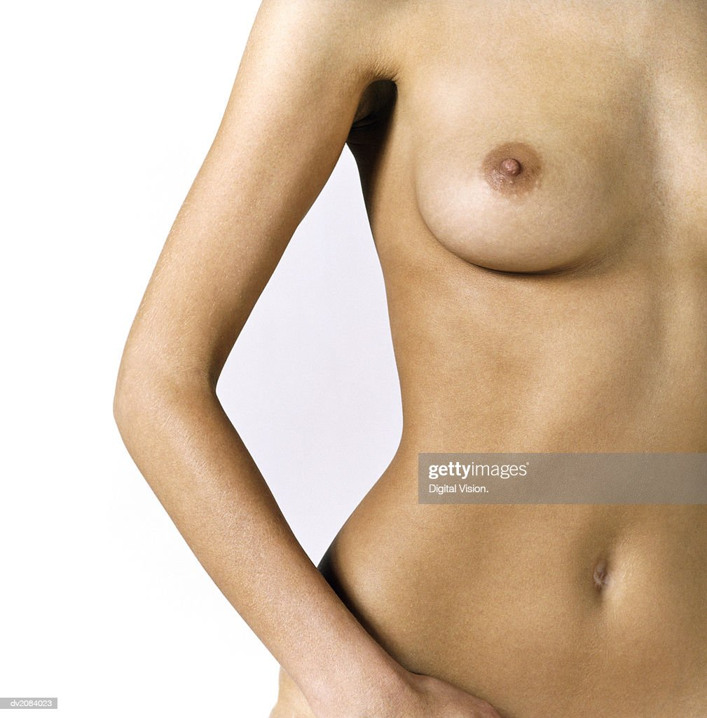 Naked Woman's Torso : Stock Photo
