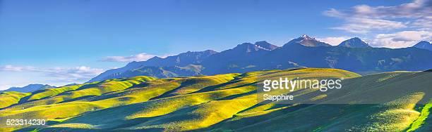 Nalati Grassland,Xinjiang,China