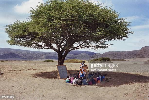 Namayiana Risanto teaching the pupils of Sanjan preschool under a tree in the Malambo district of Ngorongoro The region of Ngorongoro in Tanzania is...