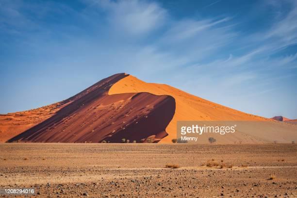 nambia sossusvlei desert dune 40 namib naukluft parque nacional - deserto da namíbia - fotografias e filmes do acervo