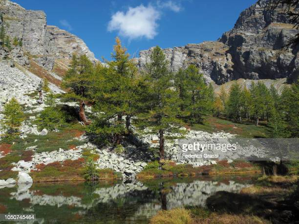 Nameless Alpine Panoramic View of a Pond Near Lago di Agro in The High Bognanco Valley