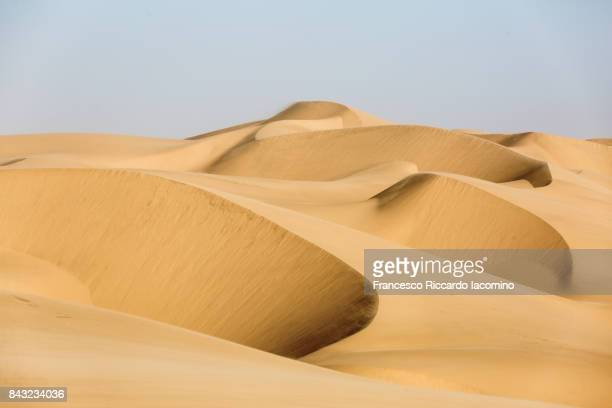 Namib desert, goldan sand dunes, Namibia, Africa