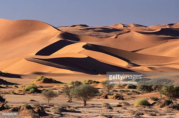 Namib Desert, Namibia - South Africa
