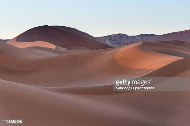 namib desert, sossusvlei, namibia. - セスリエム ストックフォトと画像