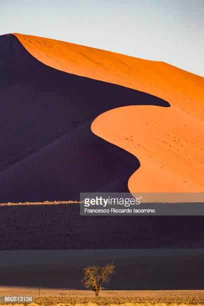 Namib desert, Sossusvlei sand dunes, Namibia, Africa