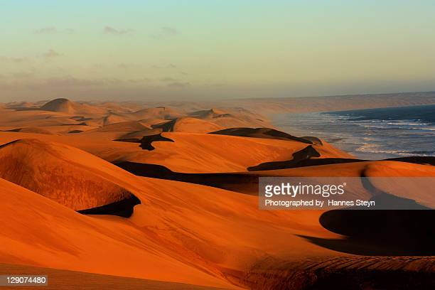 Namib dunes in sunset