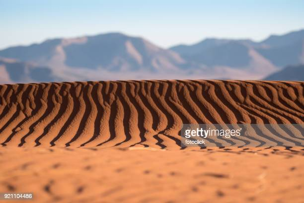 namib rand naturreservat, namibia - south african currency stock photos and pictures