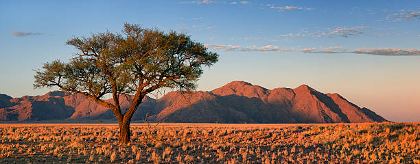 Namib Rand Sunrise Panorama