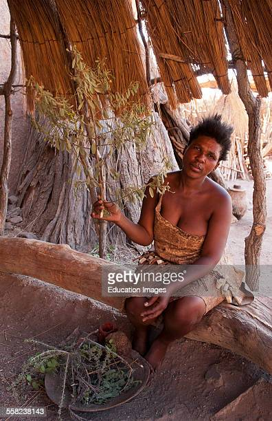 Namibia Africa remote Damara Tribe in Damaraland woman working with leaves in native village