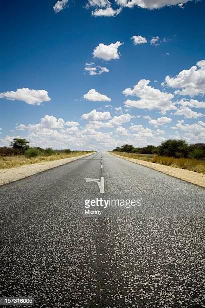 Namibia Highway - Turn Left