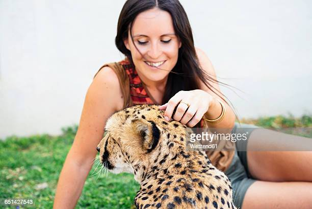 namibia, kamanjab, tourist petting a tame cheetah - tame stock photos and pictures