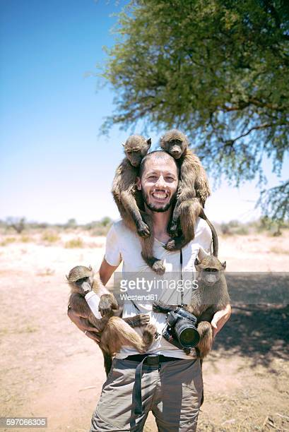 namibia, man with camera holding four baby baboons - monkey man stock pictures, royalty-free photos & images