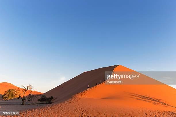 namibia, namib desert, namib naukluft national park, tour group walking up a desert dune - ナミブ砂漠 ストックフォトと画像