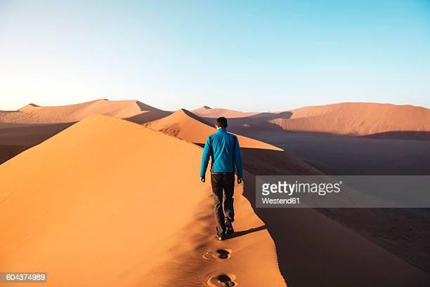 Namibia, Namib Desert, Sossusvlei, Man walking on the top of the famous Dune 45 at sunrise