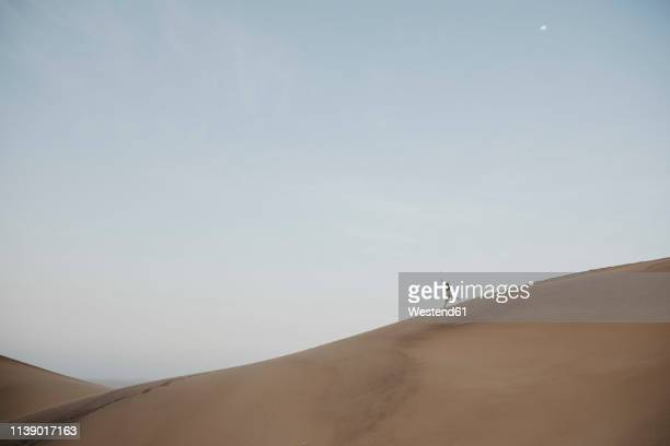 namibia, namib, woman running down desert dune - downhill skiing stock pictures, royalty-free photos & images