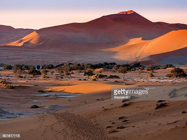 Namibia, Naukluft National Park, Namib Desert, Sossusvlei, Dead Vlei, Sand dunes in the evening