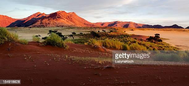 ナンビア草原の景観
