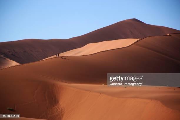 namíbia: turistas escalar a duna de areia do deserto de namib - deserto da namíbia - fotografias e filmes do acervo