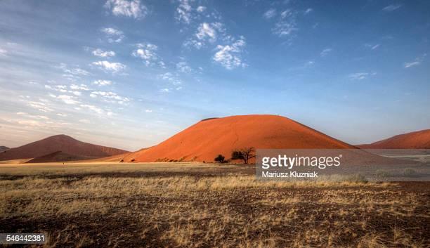 Namibian desert dune 45 morning light