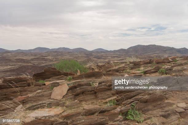 Namibian landscape along C14 road.