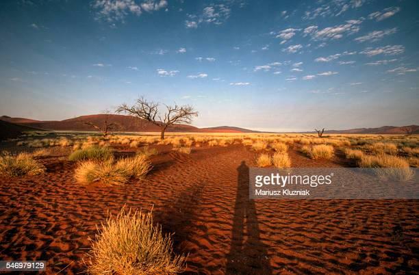 Namibian sand dunes sunrise human shadow