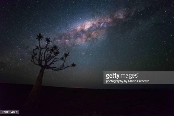 namibian sky iii - deserto da namíbia - fotografias e filmes do acervo