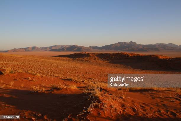namibrand reserve, namibia - wüste stock pictures, royalty-free photos & images