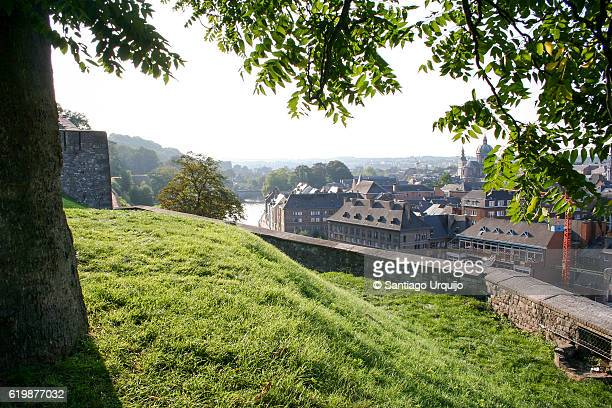 namur city alongside the meuse river from the citadel - ナミュール州 ストックフォトと画像