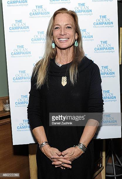 Nan Hauser attends The Ocean Campaign Launch Party at The Late Late on December 9 2014 in New York City