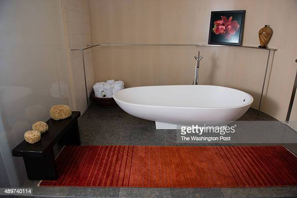 Nancy Conrad's extensively renovated condo in the Watergate building is pictured on August 22 2015 The master bathroom has a tub and a shower