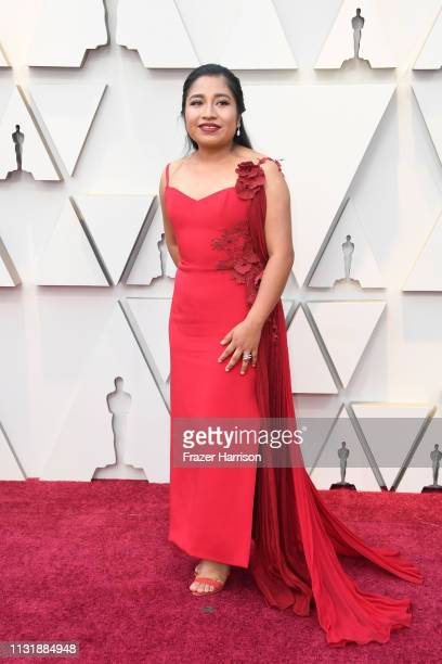 Nancy García García attends the 91st Annual Academy Awards at Hollywood and Highland on February 24 2019 in Hollywood California