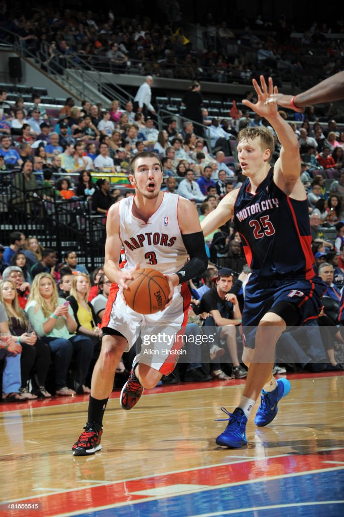 Nando de Colo #3 of the Toronto Raptors handles the ball against the Detroit Pistons on April 13, 2014 at The Palace of Auburn Hills in Auburn Hills, Michigan.
