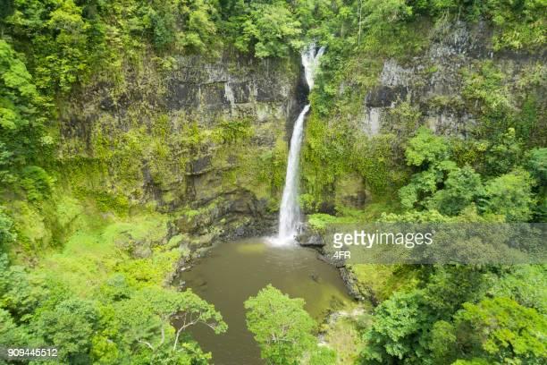 nandroya falls, queensland, australia - atherton tableland stock pictures, royalty-free photos & images