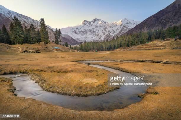 Nanga Parbat mountain at Fairy Meadows ,north Pakistan