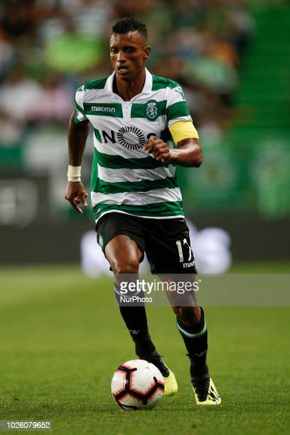 Nani of Sporting in action during Primeira Liga 2018/19 match between Sporting CP vs CD Feirense in Lisbon on September 1 2018