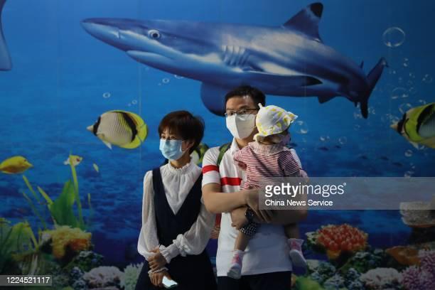 Nanjing Drum Tower Hospital nurse Xu Na and her family visit Nanjing Underwater World on May 12 2020 in Nanjing Jiangsu Province of China Nanjing...