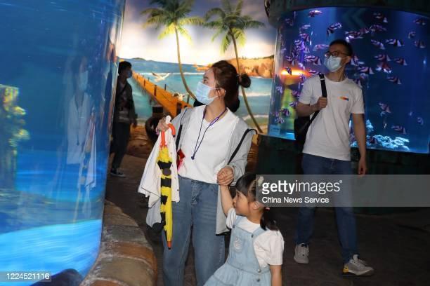 Nanjing Drum Tower Hospital nurse Zhuang Xiaoli and her family visit Nanjing Underwater World on May 12 2020 in Nanjing Jiangsu Province of China...
