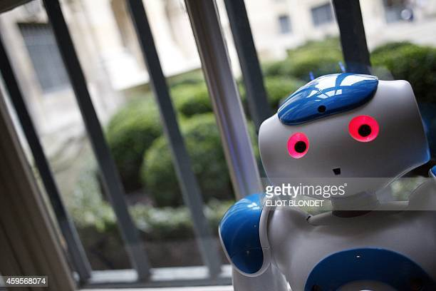 """""""Nao"""", a humanoid robot of the Institute for Intelligent Systems and Robotics performs during a press conference at the Institute of France in Paris,..."""