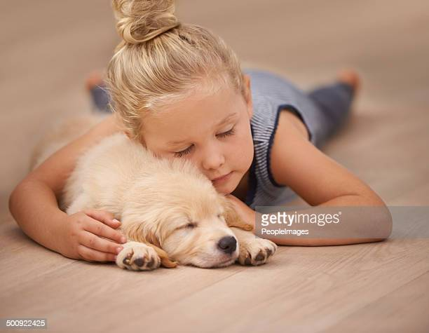 nap time for the two friends - flooring stock photos and pictures