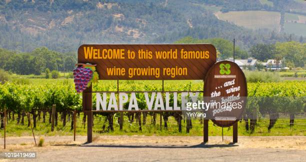 napa valley california vineyard tourist road sign - napa valley stock pictures, royalty-free photos & images