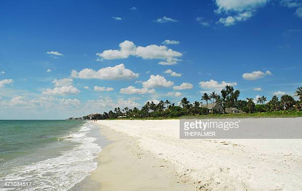 naples beach - naples florida stock pictures, royalty-free photos & images