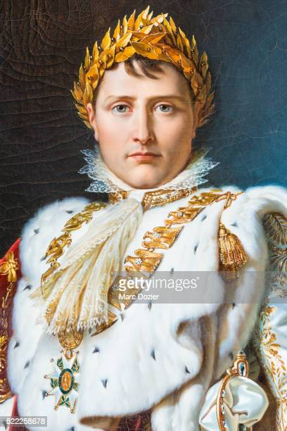 an analysis of the description of france by napoleon i Napoleon bonaparte essay 1537 words | 7 pages napoleon bonaparte has been called a hero by some and a villain by many others he was the first consul of france, then the emperor of france, and finally an outlaw.