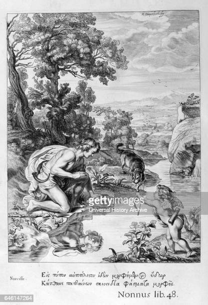 Narcissus Engraving from 'Tableaux du temple des muses' by Michel de Marolles known as the abbe de Marolles a French churchman and translator