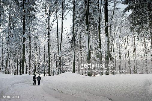 Narnia Landscape Stock Photo