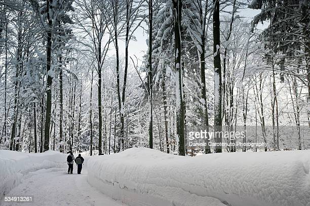 narnia landscape - daniele carotenuto stock pictures, royalty-free photos & images